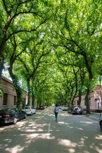 kikinda ulica ivanovic1.jpg