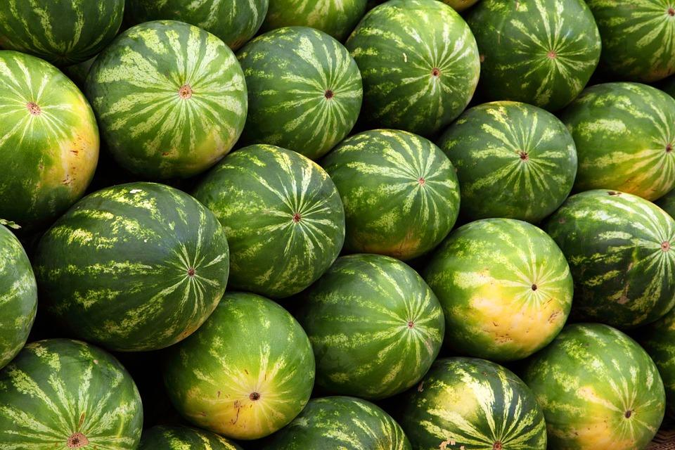 lubenice pixabay