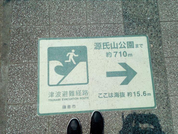 Evakuaciono uputstvo na pločniku za slučaj cunamija Foto: N. Pisarev