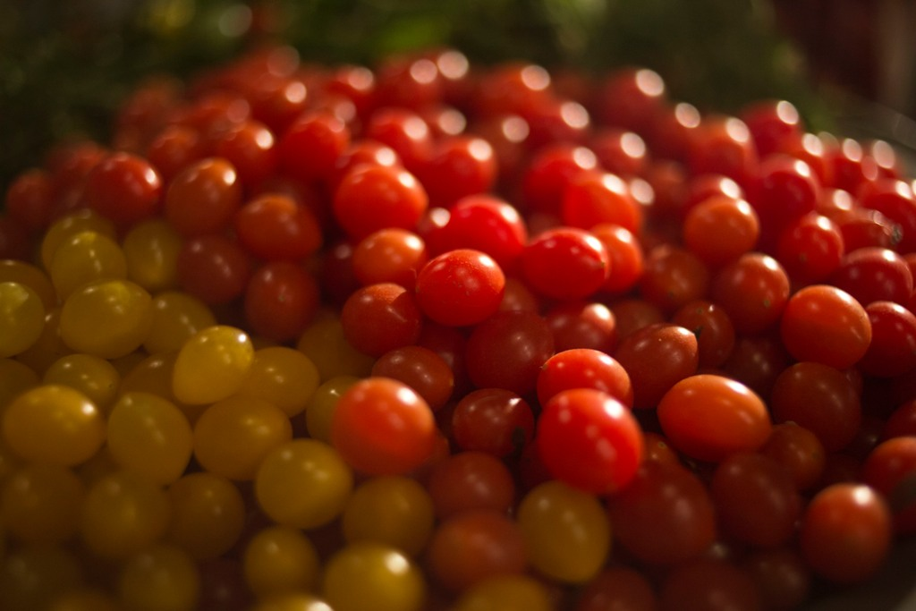 paradajz izrael tanjug