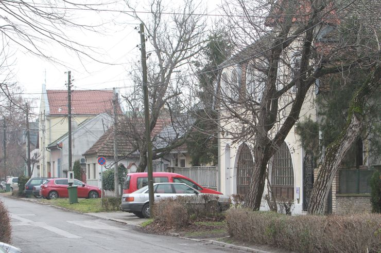 Ove godine predmet konkursa biće i lokacije u MZ Salajka Foto: Dnevnik.rs/ B. Lučić