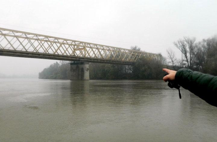 Most na Tisi/M. Mitrovic
