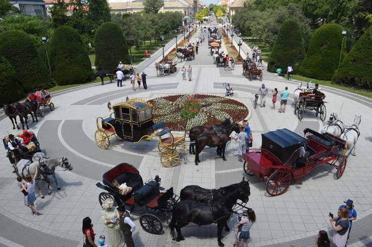 Smotra konjskih zaprega na trgovima i centralnim ulicama Sombora Foto: Dnevnik.rs