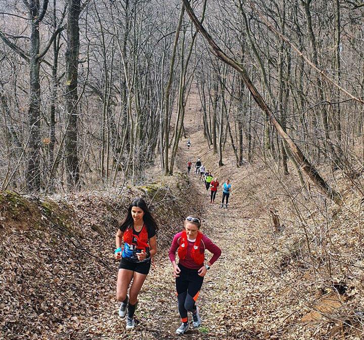 Фрушкогорски маратон/ Детаљ са трећег тренинга