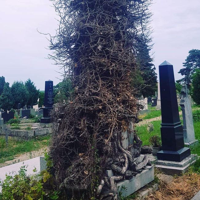 Роберт Чобан/Један од споменика на гробљу