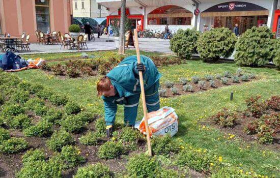 Град Сомбор/Зеленило се уређује у центру, али и по селима