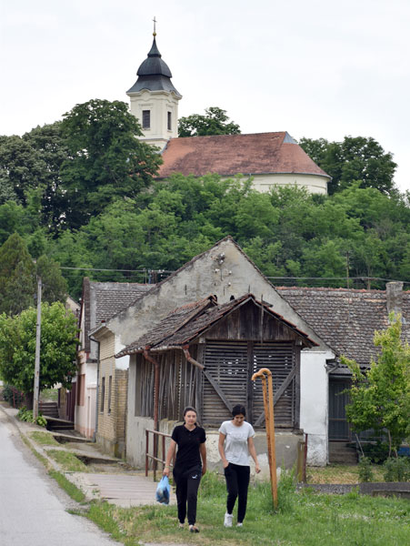С. Шушњевић/Нештин