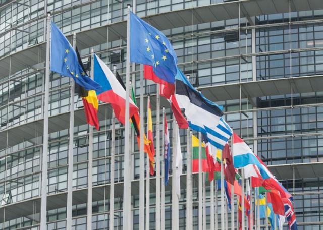 EU, flags  Foto: EPA/PATRICK SEEGER