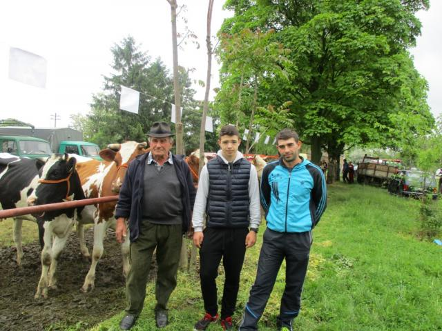 izlozba goveda Balaban