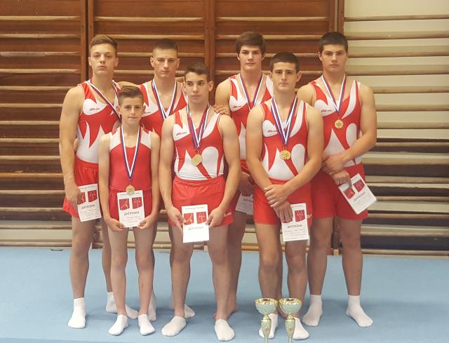 gimnasticari vojvodine