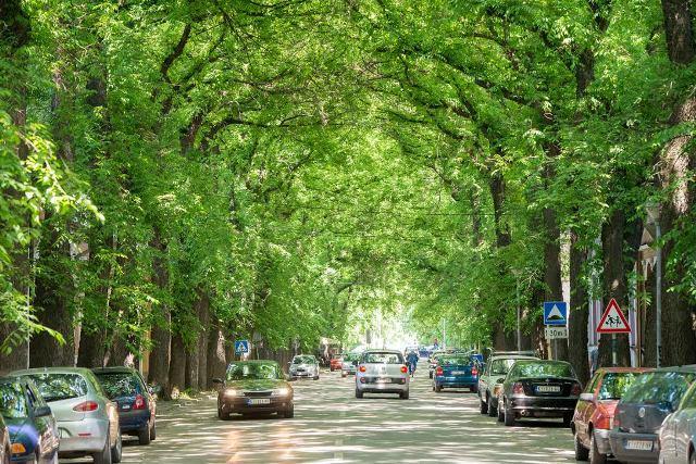 kikinda ulica ivanovic2.jpg