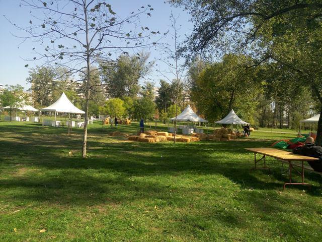 limanski park ukusi vojvodine