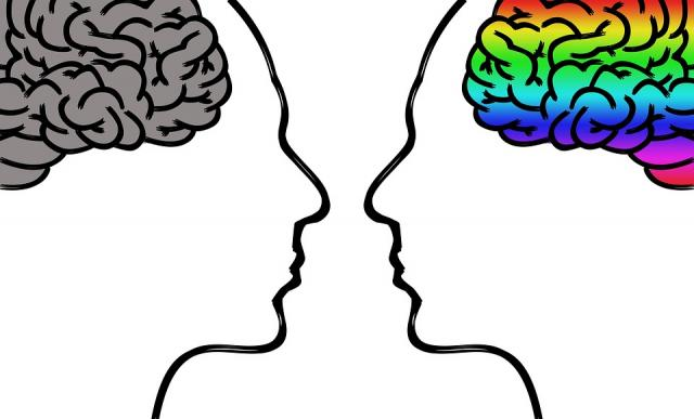 mozak pixabay