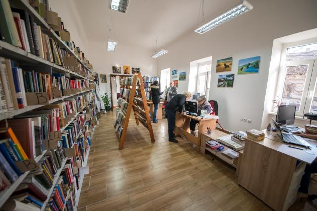 titel biblioteka, Dnevnik/Jelena Ivanović