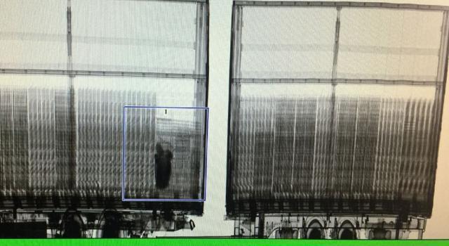 skener na horgosu, Uprava carina