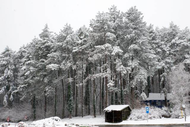 sneg na fg foto Jelena Ivanovic