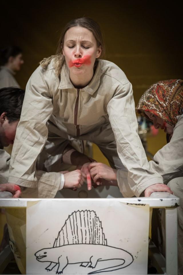 don kihot, novosadsko pozoriste
