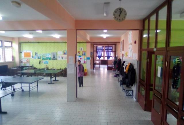 Škola u Plavni prelazi na čistiji i jeftiniji energent Foto: Dnevnik.rs