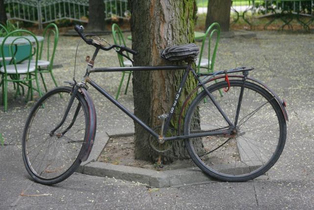 biciklo sdnevnik