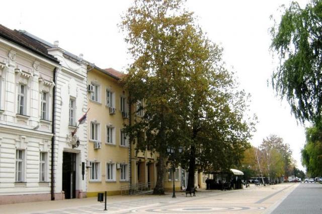 Kovačica trasira puteve održivog razvoja  Foto: Dnevnik.rs/ M. Mitrović