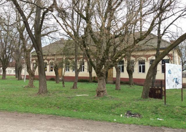 pladniste skola veliki gaj