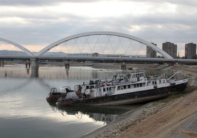 dunav brodovi