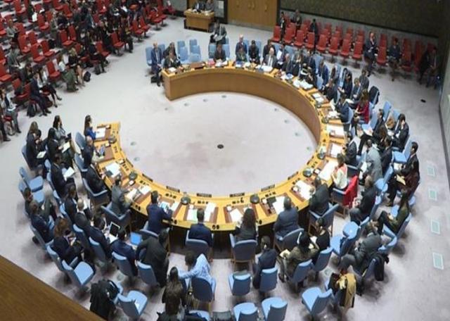 Sednica SB UN Foto: Tanjug/video