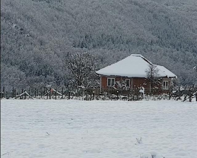 Sneg, zima Foto: Tanjug/Video, arhiva