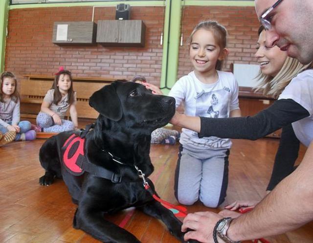 Labrador Lara svuda dobrodošla Foto: F. Bakić