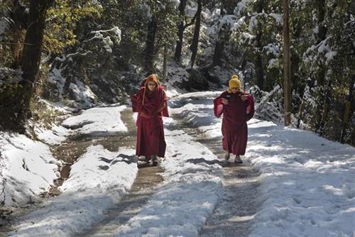 Sneg na Tibetu Foto: AP Photo/Ashwini Bhatia