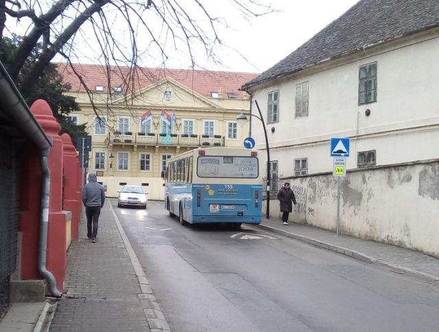 U Sr. Karlovcima će biti postavljeno još deset usporivača brzine vozila Foto: Dnevnik.rs