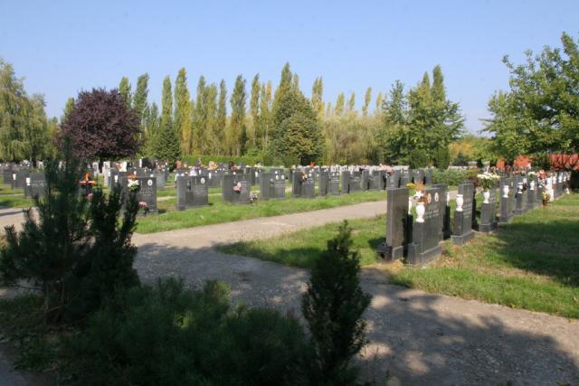 groblje dnevnik