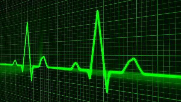 puls srce pixabay