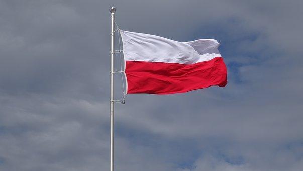 zastava poljske, pixabay