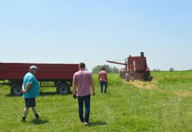 Prvi ječam skinut sa uzurpiranih parcela kod Sombora Foto: Grad Sombor