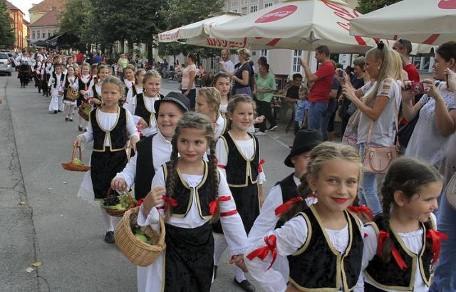 Grožđebal Foto: Dnevnik.rs/arhiva