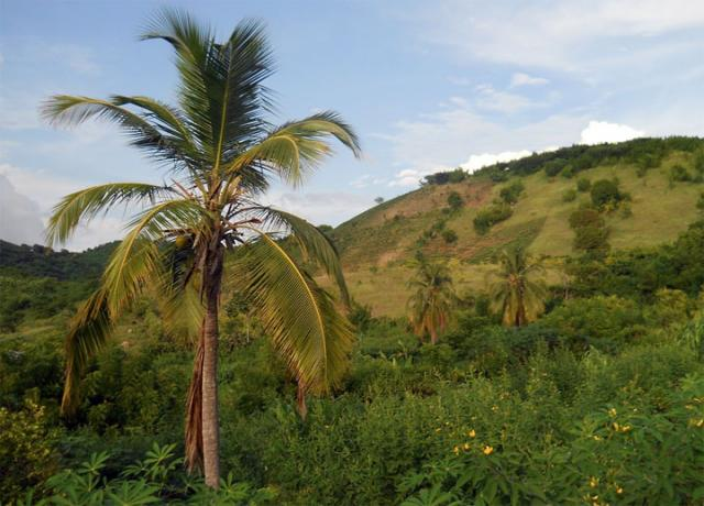 Haiti/Pixabay