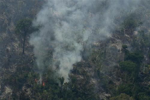 Požar u Amazonu Foto: AP foto - Eraldo Peres