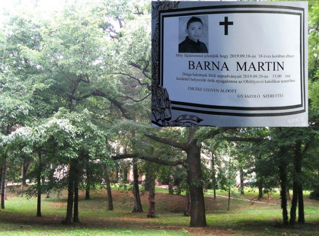 Park u kome se dogodio obračun  i umrlica Martina Barne Foto: M. Mitrović