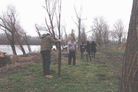 Sadnju 150 mladih vrba pomogla i Šumska uprava Foto: privatna arhiva