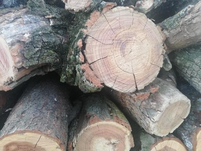 drva grejanje