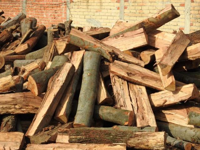 Ogrevno drvo Foto: privatna arhiva