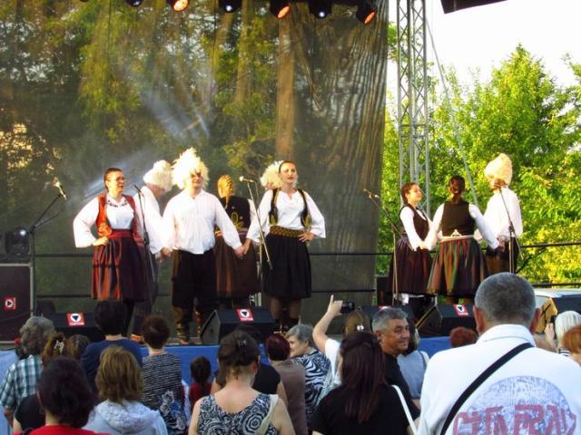 "Nastup folklora KUD-a ""Sava Vukosavljev"" iz Zmajeva Foto: privatna arhiva"