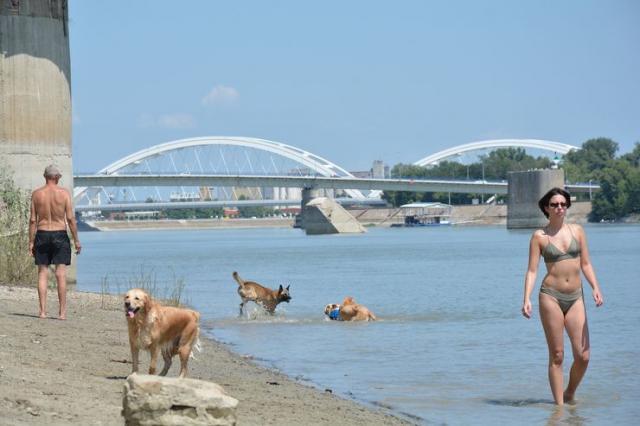 Kraj Dunava spas od žege Foto: V. Fifa