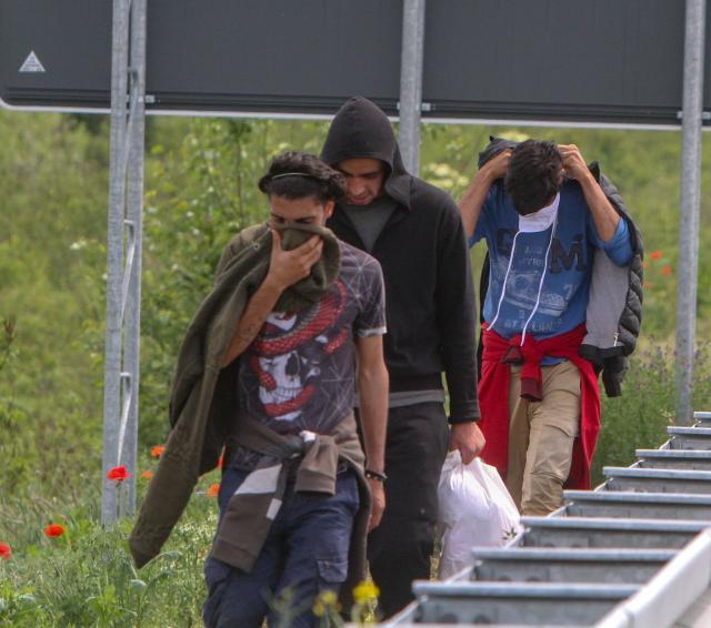 sid migranti foto r hadzic