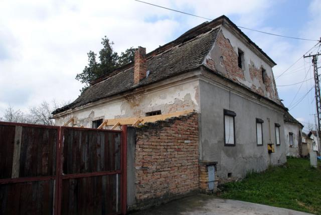 В. Фифа
