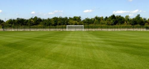 fudbalski_teren Foto: Youtube/prinscreen